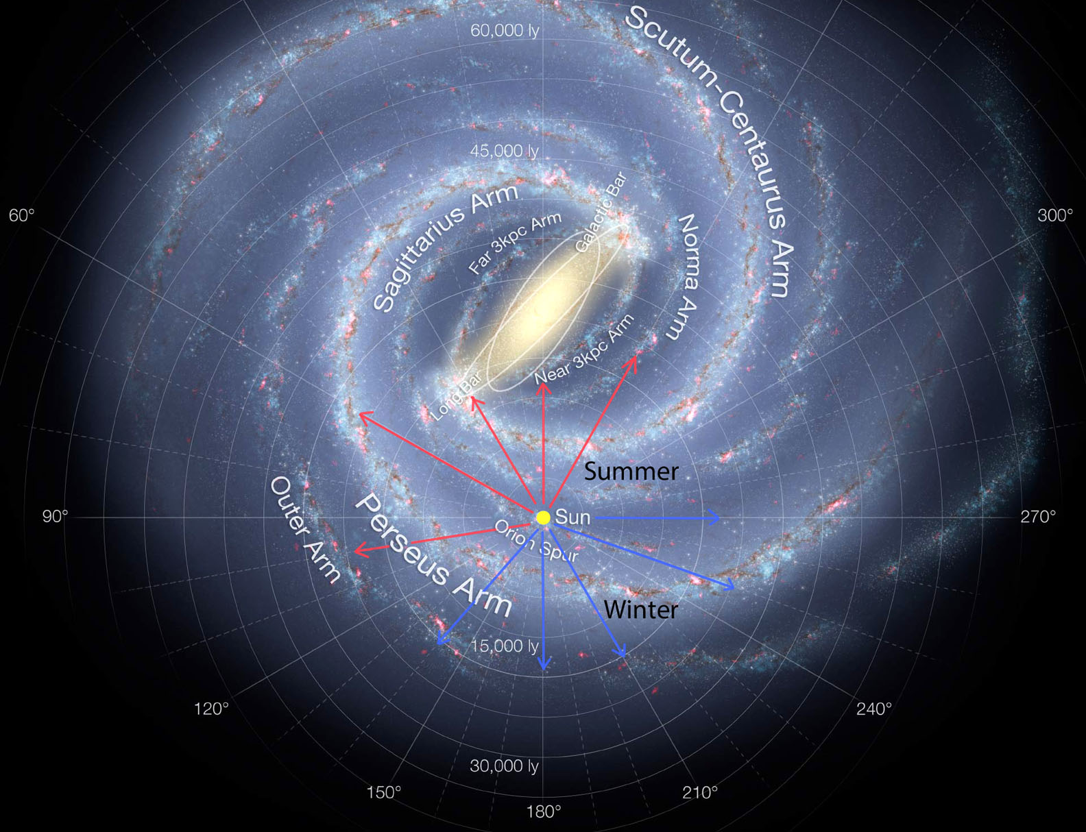 This detailed annotated artistÕs impression shows the structure of the Milky Way, including the location of the spiral arms and other components such as the bulge. This version of the image has been updated to include the most recent mapping of the shape of the central bulge deduced from survey data from ESOÕs VISTA telescope at the Paranal Observatory.